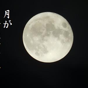 月が綺麗ですねの画像