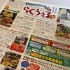恐るべし500円弁当の画像
