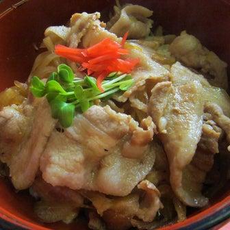 田中食堂 「黒豚丼」(東北町乙供)  モコとココ