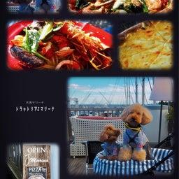 画像 bebe&coco  ψ(๑'ڡ'๑)ψ   ❸ lunchはイタリアン の記事より 6つ目