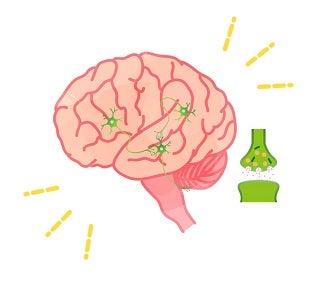 パーキンソン病・脳機能
