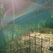 稲荷山,初めての道で進んだら神寶神社にデタ。