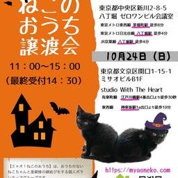 画像 ▶明日10/24(日)江戸川橋で猫譲渡会 の記事より 2つ目