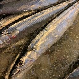 画像 秋刀魚が本気出してきた の記事より 3つ目
