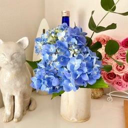画像 紫陽花の花1本で部屋のエネルギーが変わる の記事より 3つ目