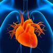 心筋炎の死亡症例。コロナワクチンとの因果関係の評価は?