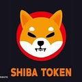 【10月24日の損益公開】SHIBAINUを買ってみたはなし