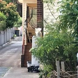 画像 シドニーで見つけたハウスハロウィンデコレーション! の記事より 5つ目