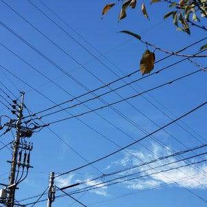 空と電線の画像