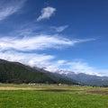 フラワーエッセンス・ペンジュラム 波動を整え心身健康幸せな毎日へ【長野県安曇野、ときどき愛知】
