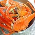 蟹がきた(´^ω^)
