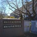 【中学受験】転勤族パパの首都圏中学受験 学校紹介致します