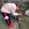 10月24日 長崎市動物管理センター譲渡会