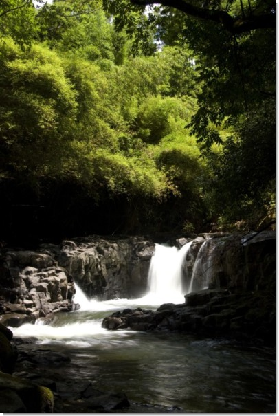 ホタルの滝