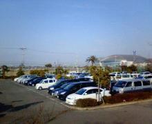NEC_0210.jpg