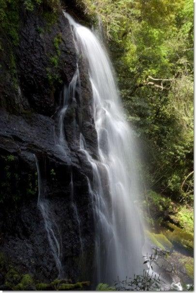 うそぐいの滝(縦全景)