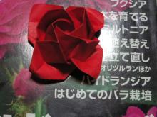 折り紙の薔薇