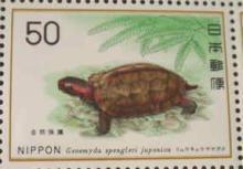 切手 リュウキュウヤマガメ