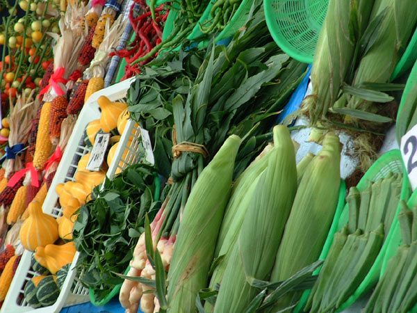 新鮮な野菜達