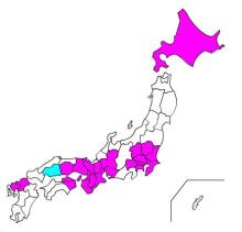 広島すげー