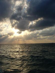 ハナシカミョウリ-沖縄4