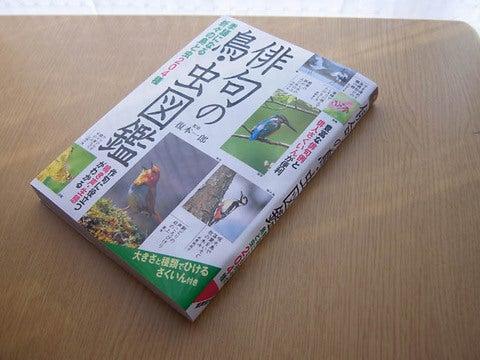 俳句の鳥虫図鑑