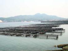 瀬戸内海の風景(かきいかだ)