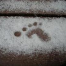 雪に触れる