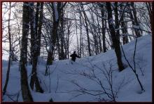 ロフトで綴る山と山スキー-パウダーゲット