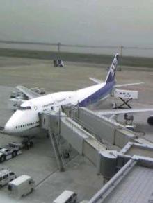 羽田空港060610_1522~001.jpg