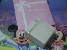 TOKYO Disney RESORT LIFE-P1000812.jpg