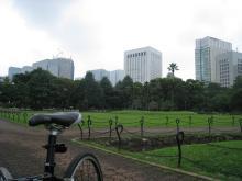 hibiya-park