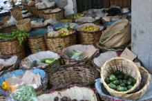 Market_Casa