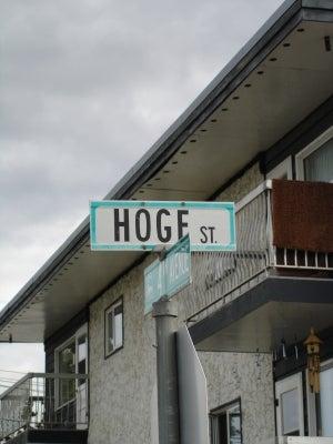 hogeストリート