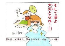 こんな男要らねぇ!!              箱ミネコの離婚日記(暴走)-メソポタミア~