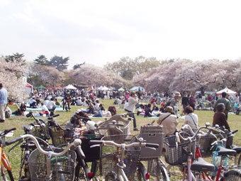 桜と花見客