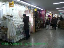 さおり・うさこの韓国のほほん留学生活