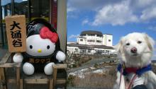 Mrs.Luckyのラッキー・チャ・チャ・チャ!-お天気いいけど山の上は寒かった~~^^;