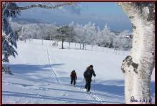 ロフトで綴る山と山スキー-ゴルフ場から
