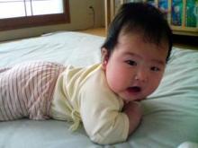 Grumpy Monkey(不機嫌なおさるさん)の観察日記-mini negaeri Jun17