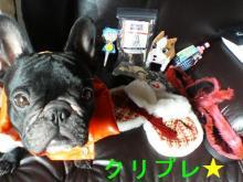 クリスマスプレゼント★
