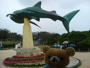 080209 沖縄