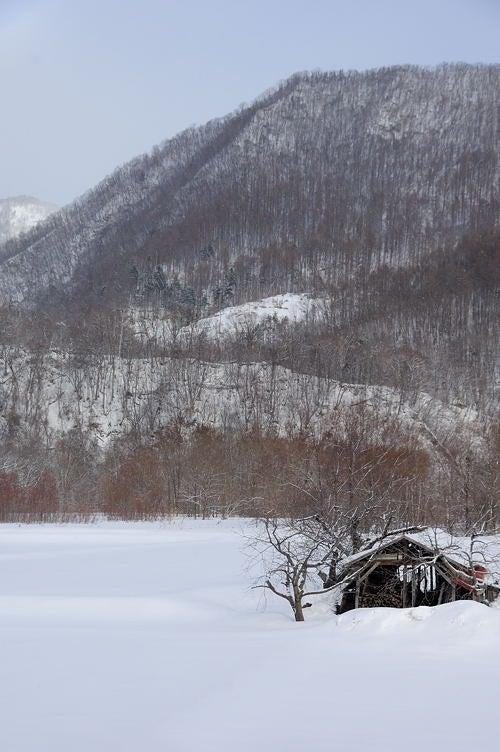 ブロふぉとぎゃらり~-里の雪景