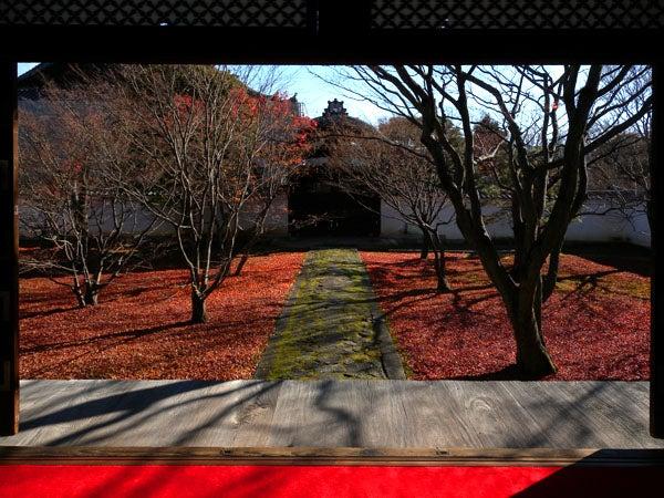 西陣に住んでます-妙覚寺