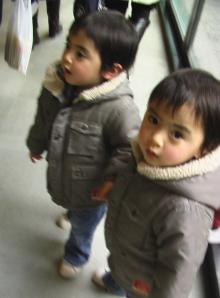 新☆春ちゃんと双子ちゃん-16