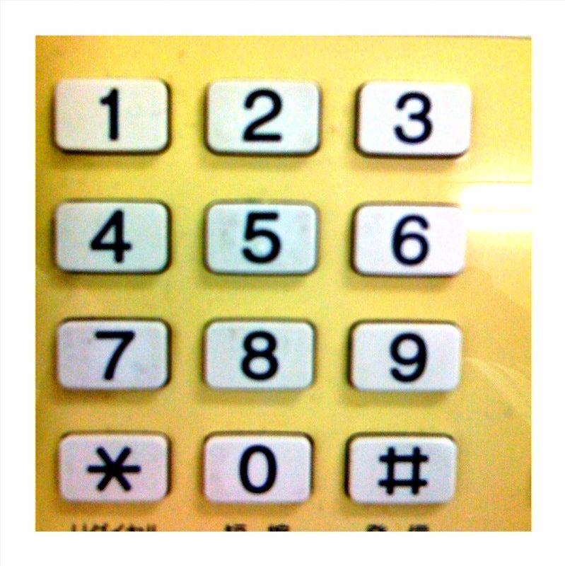 ポケットフォトグラフィー 904×602-photo.jpg
