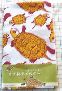 みのじのオミセ 2009 ニホンイシガメ