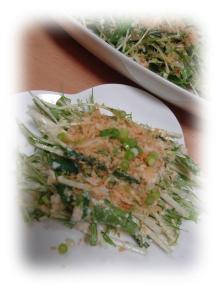 アルベンス水菜と豆腐のサラダ
