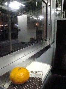 スローライフ的日々雑感-Image0051.jpg