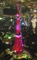 ピンク東京タワー